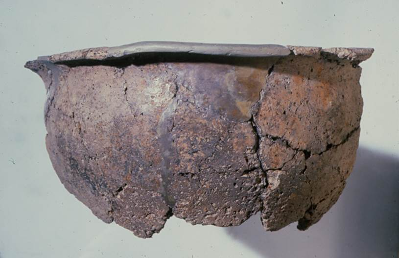 Pot sherd excavated from Lismore Fields